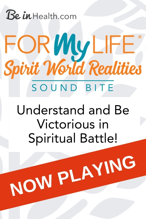 A biblical perspective into the spirit world including the Kingdom of God and Satan's kingdom and how to be successful in spiritual warfare.